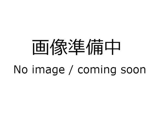 Panasonic   松下 TIG STAR WX300