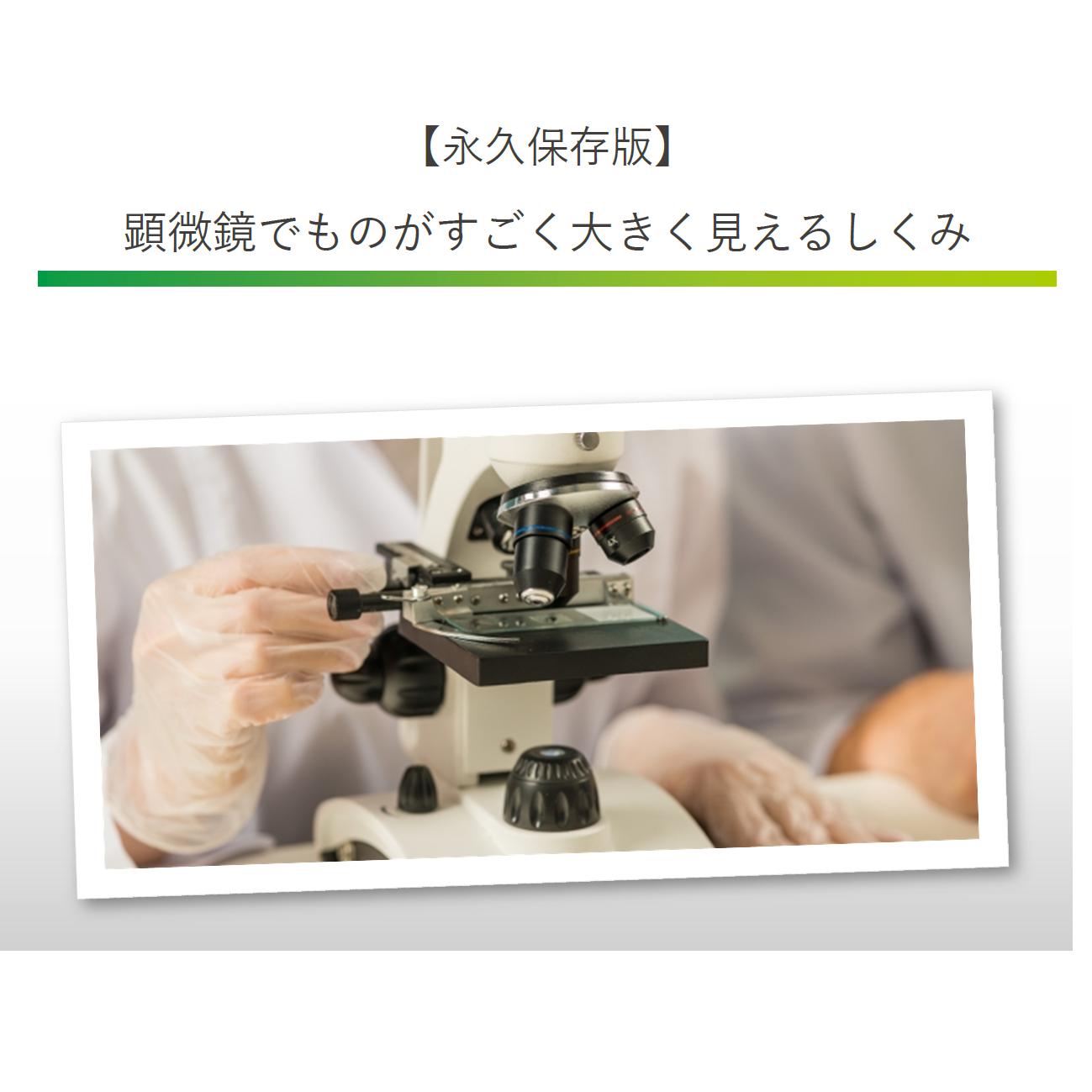 顕微鏡拡大まとめ
